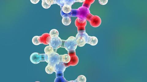 Drug model of Sofosbuvir