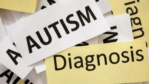 Shriver Center researchers preparing recommendations on integrated autism database