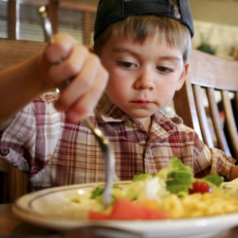 Eunice Kennedy Shriver Center seeks children with intellectual and developmental disabilities and their parents for mealtime study.